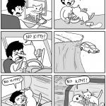 gatos sempre