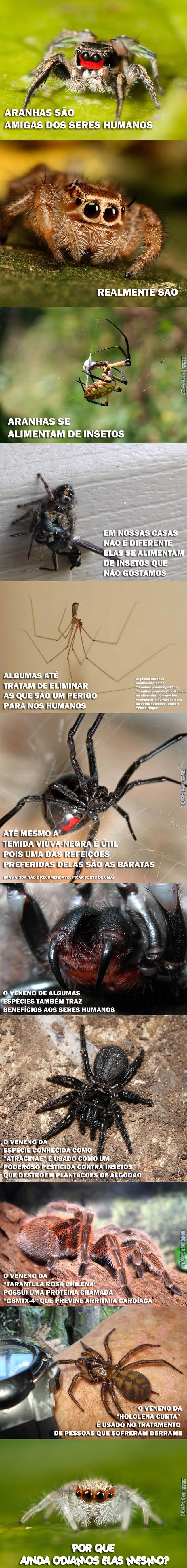 Spider The Dark Knight part 0