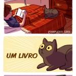 0 a gatos2