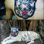 0 a tigre tatoo