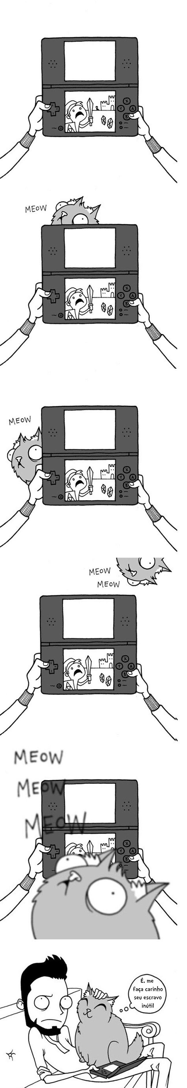 Gatos jogo