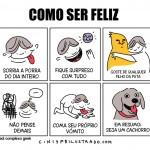 Como ser feliz cão