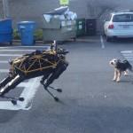 Quando um cachorro de verdade e um robô brincam um com o outro